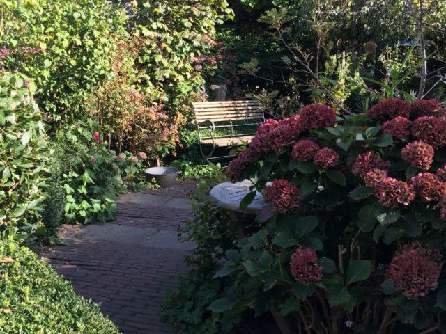 Tuin met tuinpaadje in de herfst